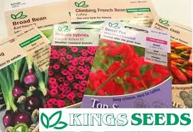 Getting Excited My Kings Seeds Arrived Today