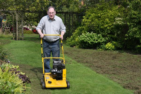 Scarifying the lawn
